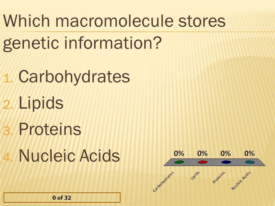 Which macromolecule stores genetic information. 1.