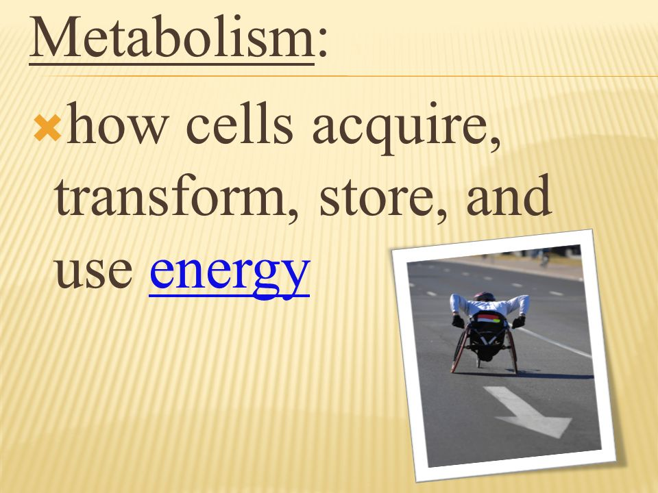 Metabolism: how cells acquire, transform, store, and use energy