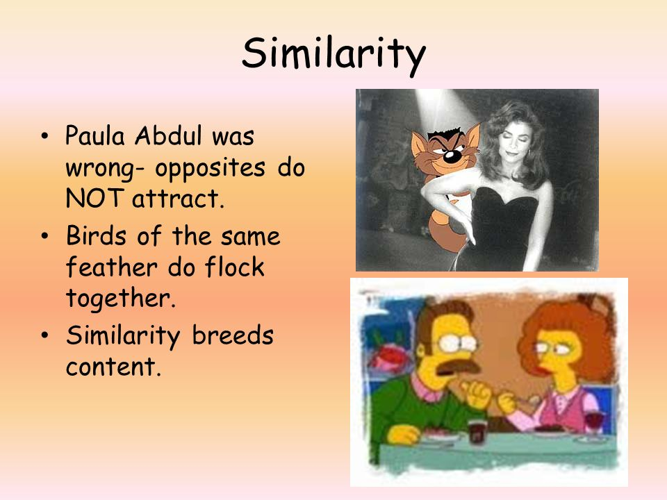 Similarity Paula Abdul was wrong- opposites do NOT attract. Birds of the same feather do flock together. Similarity breeds content.