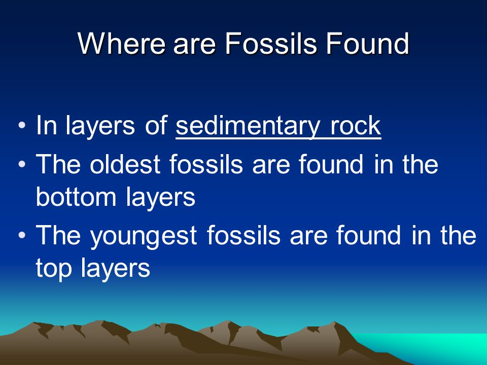 Where are Fossils Found In layers of sedimentary rock The oldest fossils are found in the bottom layers The youngest fossils are found in the top laye