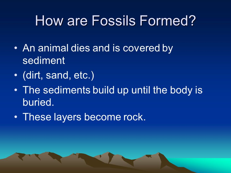 How are Fossils Formed? An animal dies and is covered by sediment (dirt, sand, etc.) The sediments build up until the body is buried. These layers bec