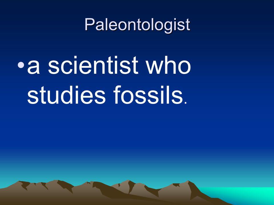 Paleontologist a scientist who studies fossils.