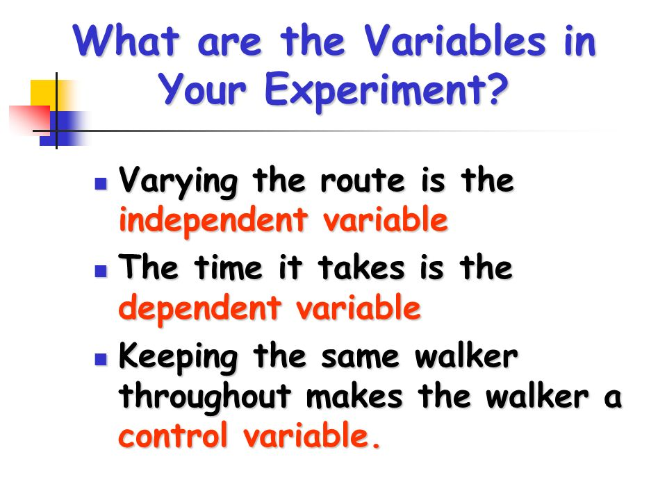 What are the Variables in Your Experiment? Varying the route is the independent variable Varying the route is the independent variable The time it tak