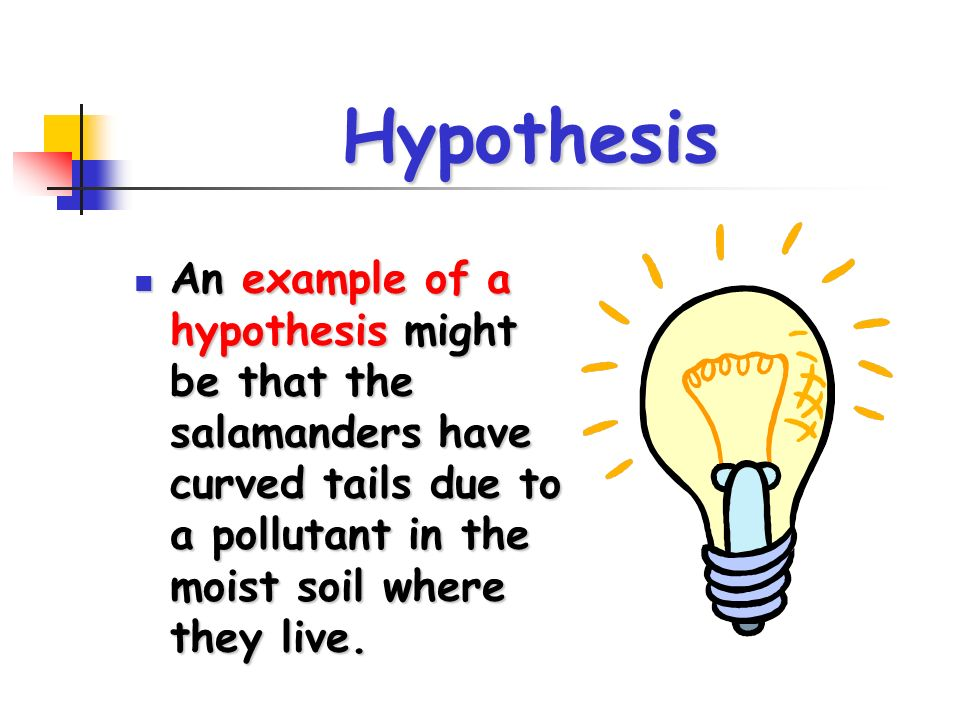 Hypothesis An example of a hypothesis might be that the salamanders have curved tails due to a pollutant in the moist soil where they live. An example