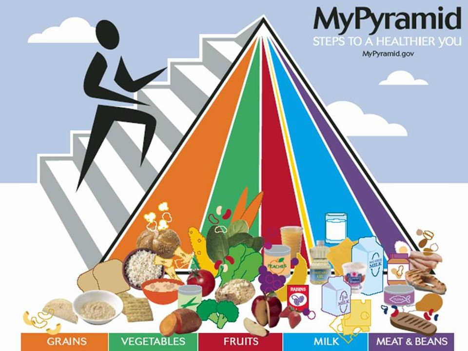 The Food Pyramid Steps to a healthier you GRAINSVEGETABLESFRUITSOILSMILKMEAT & BEANS