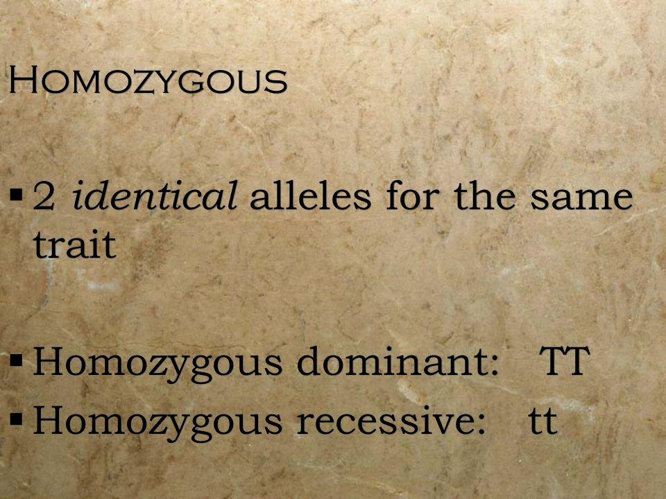Homozygous 2 identical alleles for the same trait Homozygous dominant: TT Homozygous recessive: tt Homozygous 2 identical alleles for the same trait H