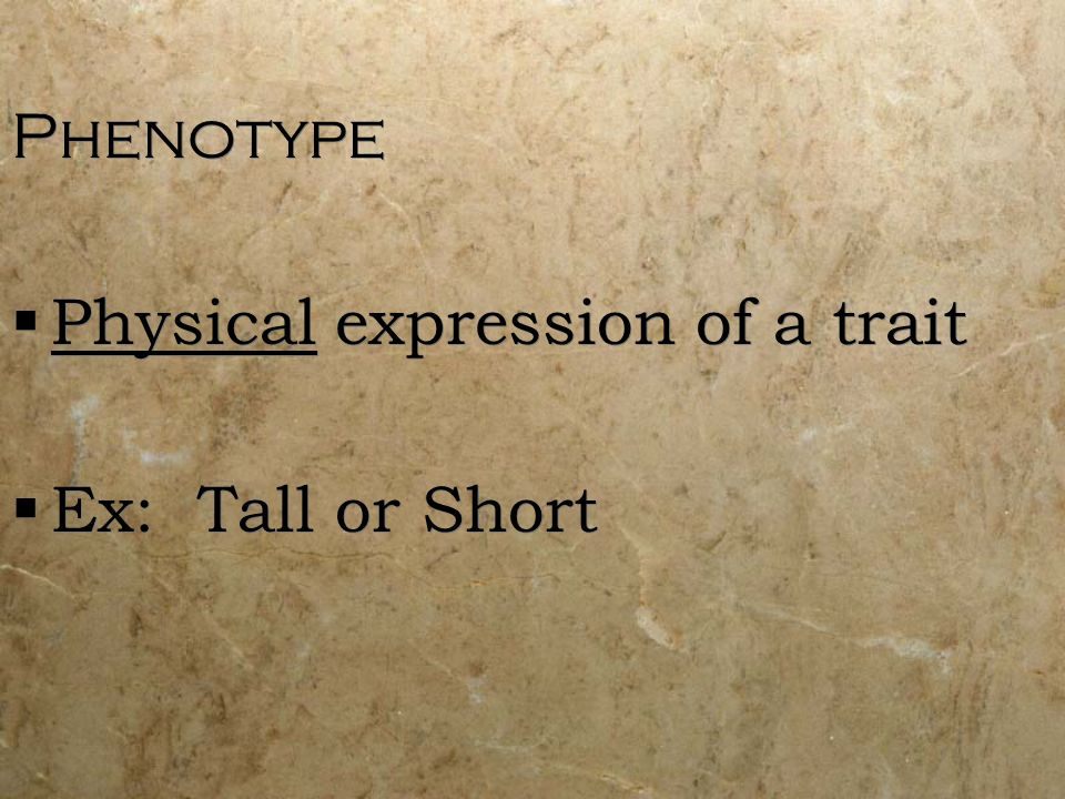 Phenotype Physical expression of a trait Ex: Tall or Short Phenotype Physical expression of a trait Ex: Tall or Short