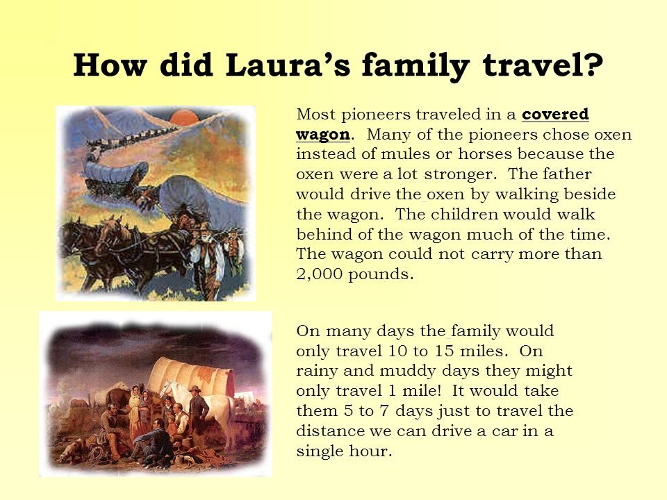 How did Lauras family travel? Most pioneers traveled in a covered wagon. Many of the pioneers chose oxen instead of mules or horses because the oxen w