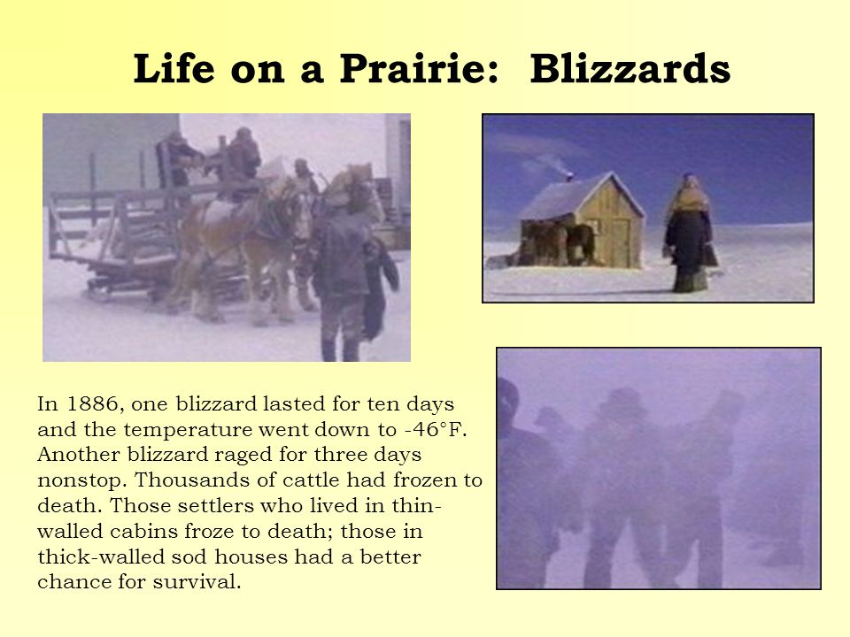 Life on a Prairie: Blizzards In 1886, one blizzard lasted for ten days and the temperature went down to -46°F. Another blizzard raged for three days n