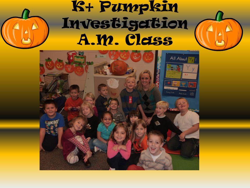 K+ Pumpkin Investigation A.M. Class