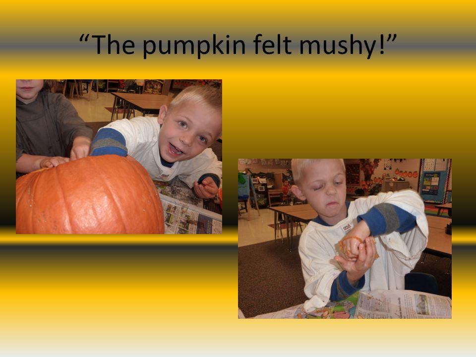 The pumpkin felt mushy!