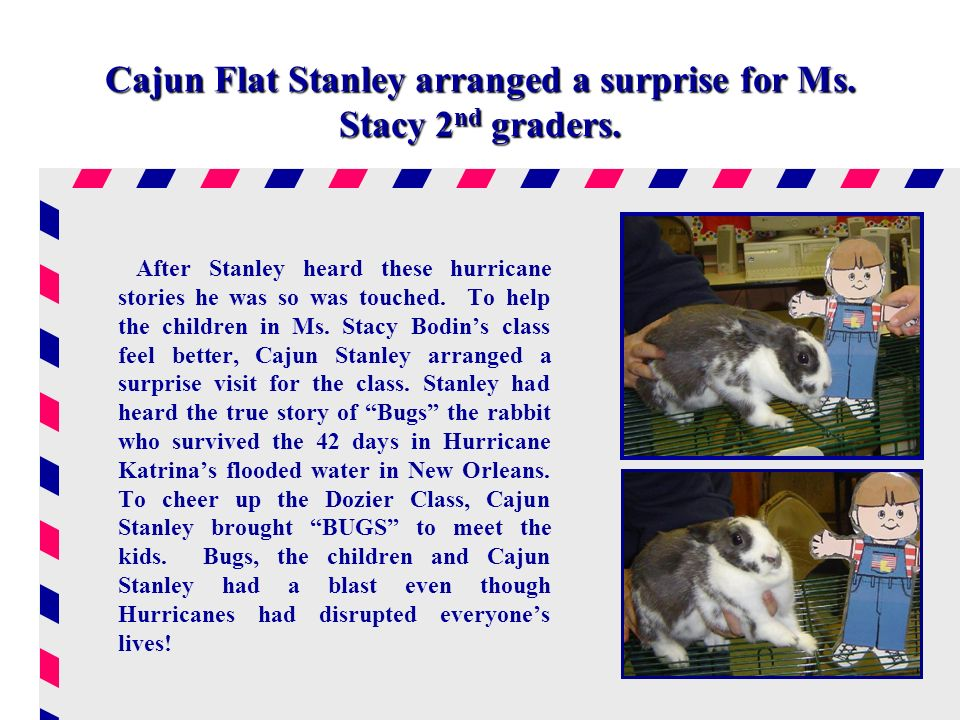Cajun Flat Stanley arranged a surprise for Ms. Stacy 2 nd graders.