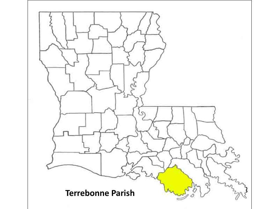 Terrebonne Parish