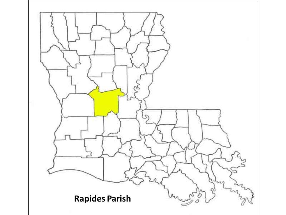 Rapides Parish