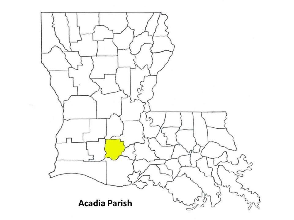 Acadia Parish