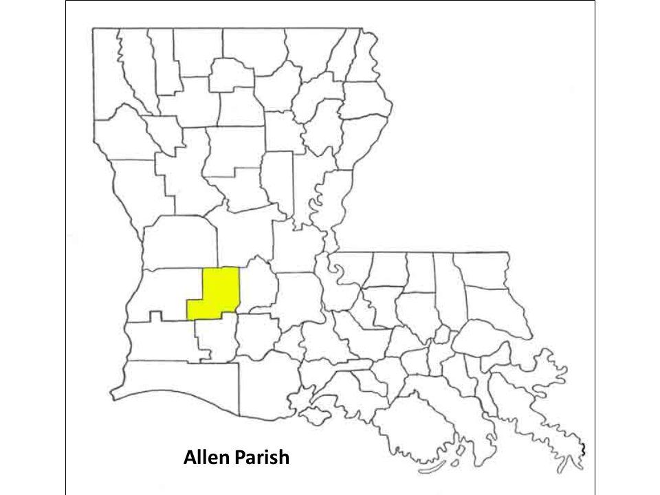 Allen Parish