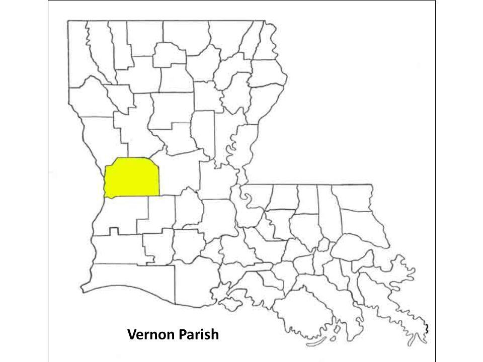 Vernon Parish