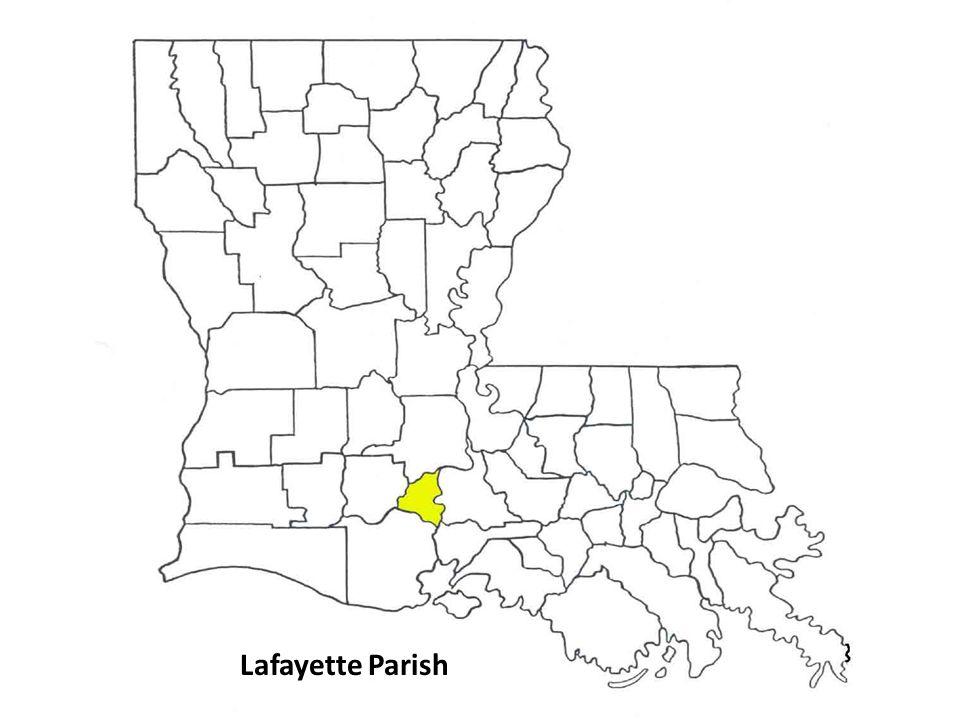 Lafayette Parish