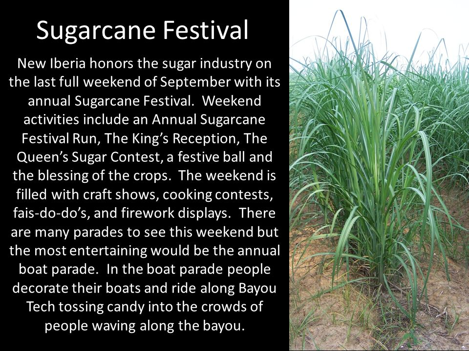 Sugarcane Festival New Iberia honors the sugar industry on the last full weekend of September with its annual Sugarcane Festival. Weekend activities i