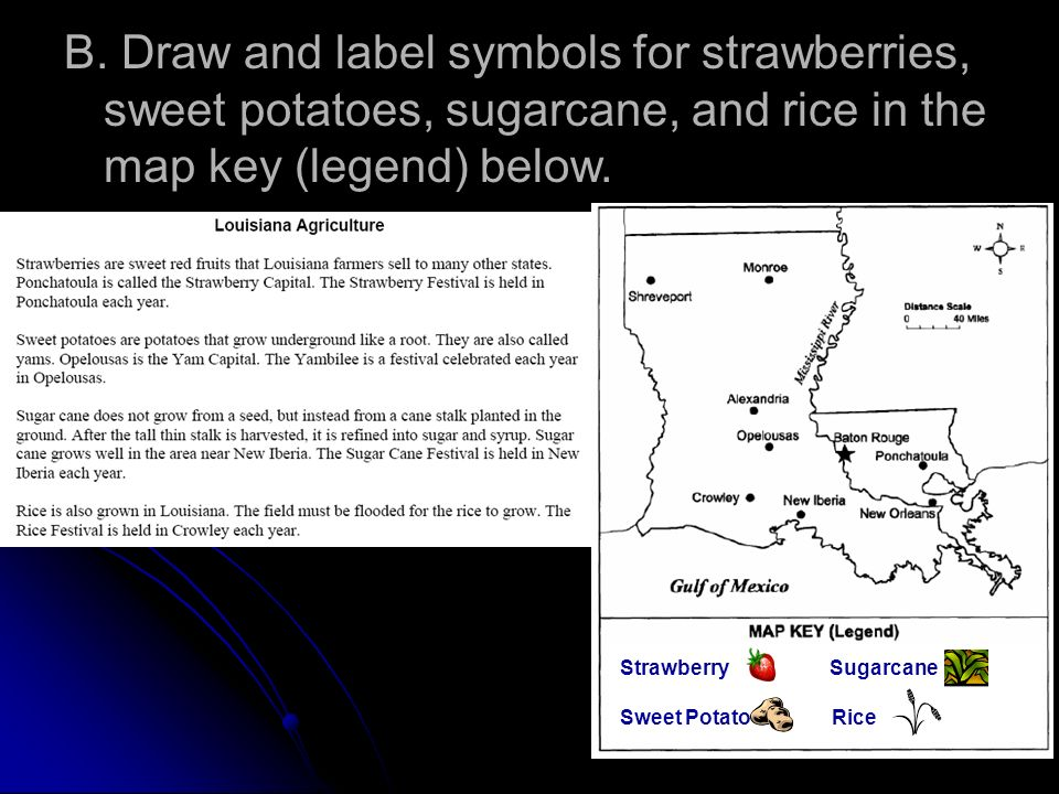 B. Draw and label symbols for strawberries, sweet potatoes, sugarcane, and rice in the map key (legend) below. Strawberry Sugarcane Sweet PotatoRice