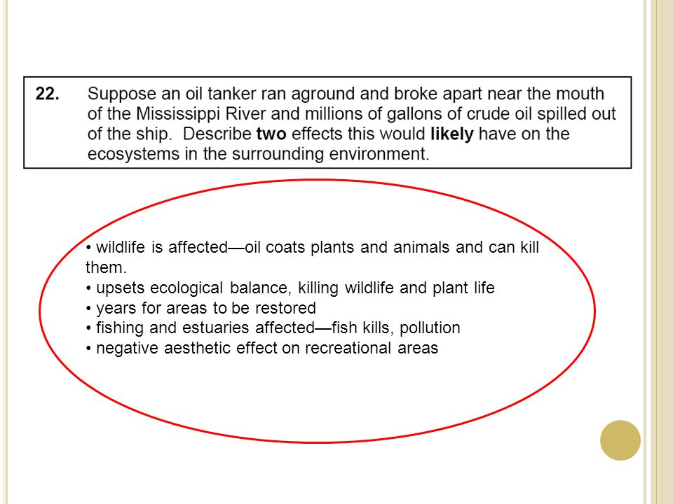 wildlife is affectedoil coats plants and animals and can kill them.