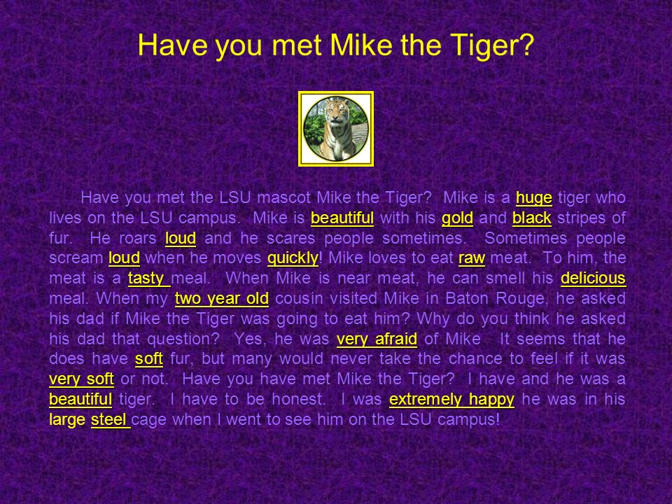 Have you met Mike the Tiger? huge beautifulgoldblack loud loudquicklyraw tasty delicious two year old very afraid soft very soft beautifulextremely ha