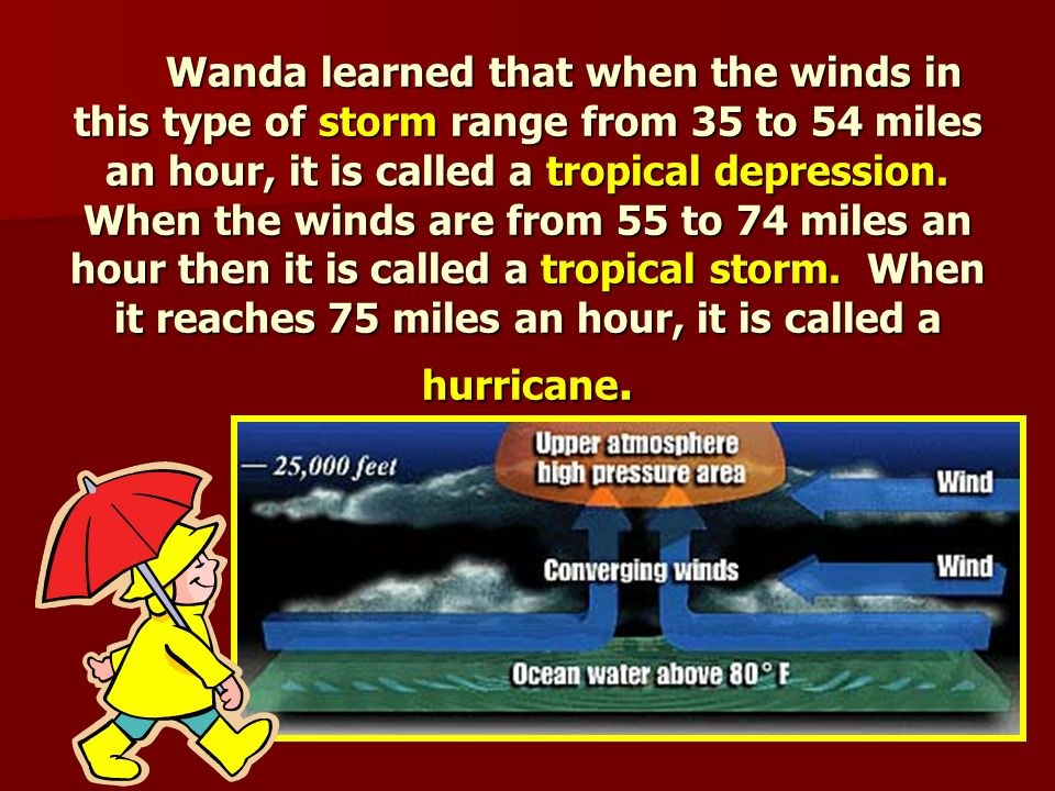 Wandering Wanda wanted to know more facts about hurricanes.