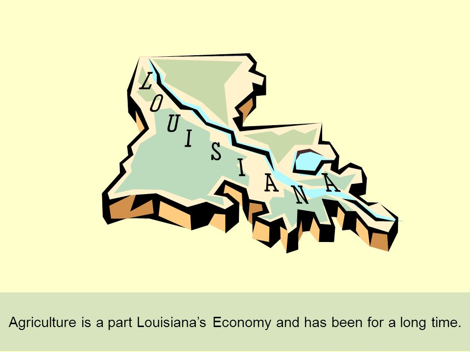 Agriculture is a part Louisianas Economy and has been for a long time.