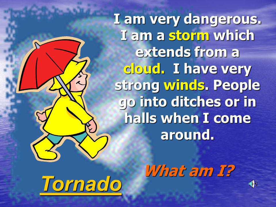 I am very dangerous. I am a storm which extends from a cloud. I have very strong winds. People go into ditches or in halls when I come around. What am