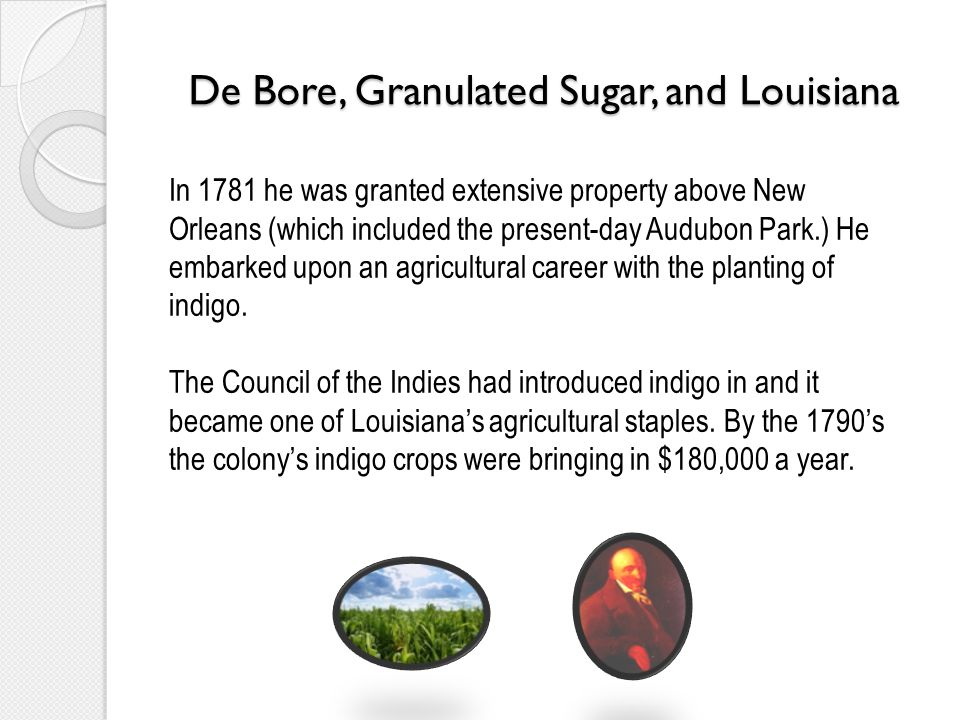 De Bore, Granulated Sugar, and Louisiana In 1781 he was granted extensive property above New Orleans (which included the present-day Audubon Park.) He