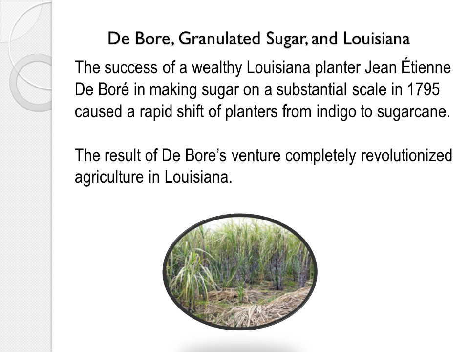 De Bore, Granulated Sugar, and Louisiana The success of a wealthy Louisiana planter Jean Étienne De Boré in making sugar on a substantial scale in 1795 caused a rapid shift of planters from indigo to sugarcane.