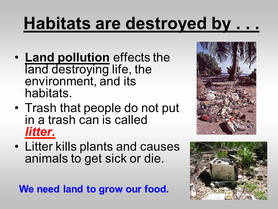 Habitats are destroyed by... Land pollution effects the land destroying life, the environment, and its habitats. Trash that people do not put in a tra