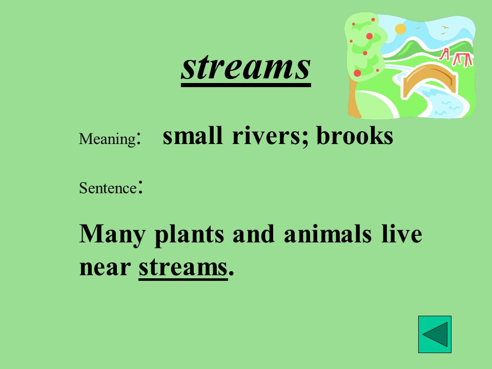 streams Meaning : small rivers; brooks Sentence : Many plants and animals live near streams.