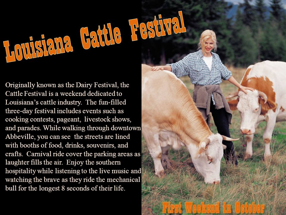 Originally known as the Dairy Festival, the Cattle Festival is a weekend dedicated to Louisianas cattle industry. The fun-filled three-day festival in