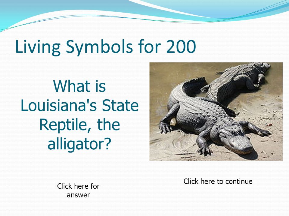 Living Symbols for 200 What is Louisiana's State Reptile, the alligator? Click here to continue Click here for answer