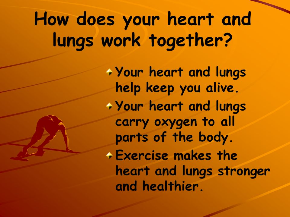 How does your heart and lungs work together? Your heart and lungs help keep you alive. Your heart and lungs carry oxygen to all parts of the body. Exe