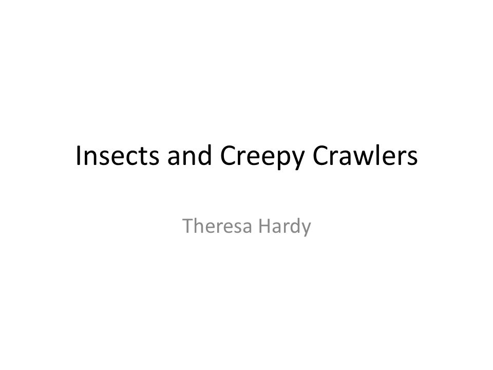 Insects and Creepy Crawlers Theresa Hardy