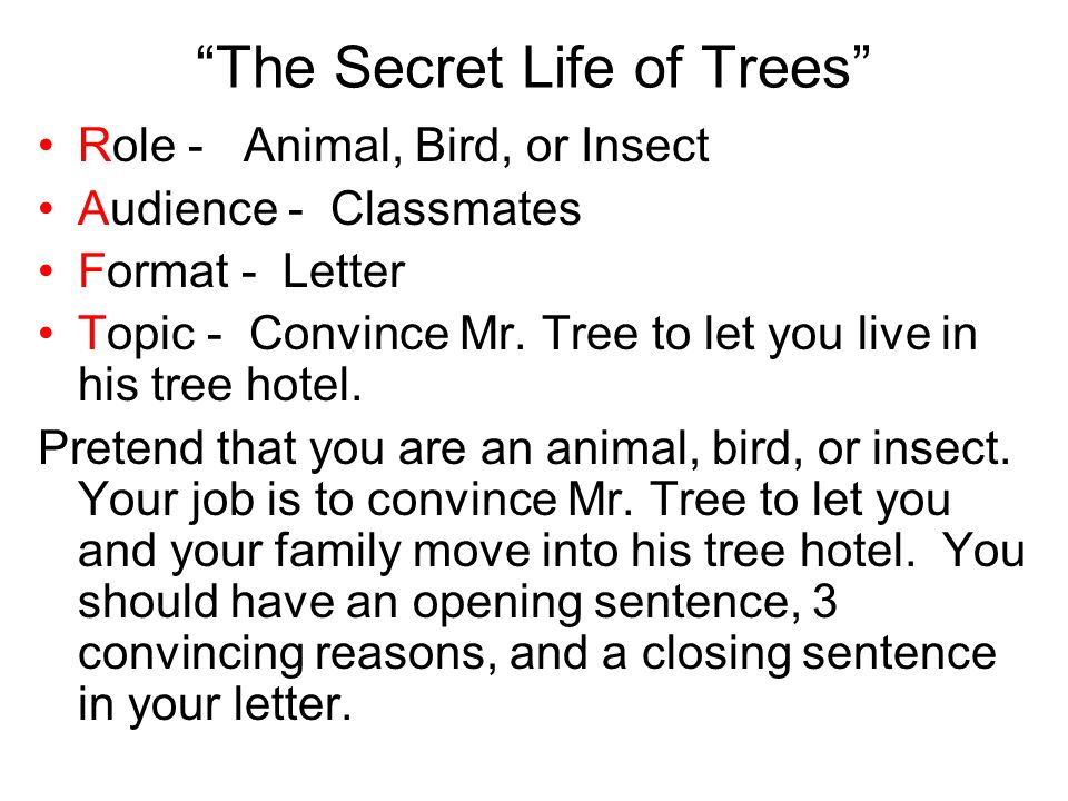 The Secret Life of Trees Role - Animal, Bird, or Insect Audience - Classmates Format - Letter Topic - Convince Mr.