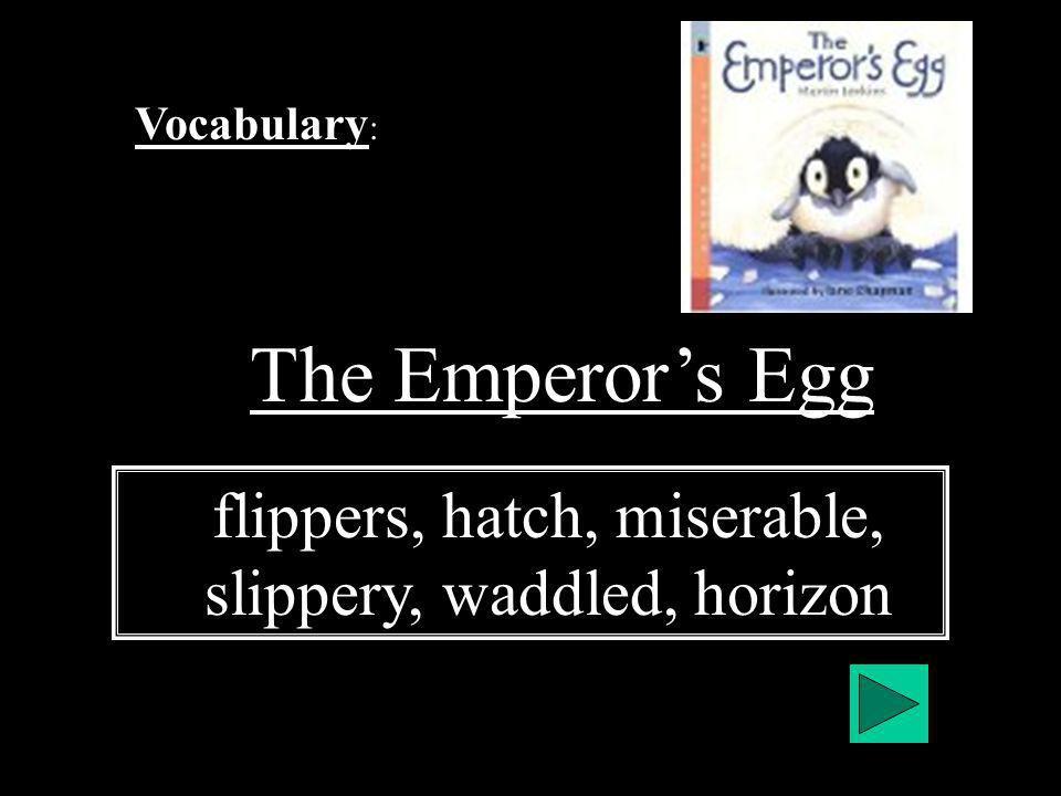 Vocabulary : The Emperors Egg flippers, hatch, miserable, slippery, waddled, horizon