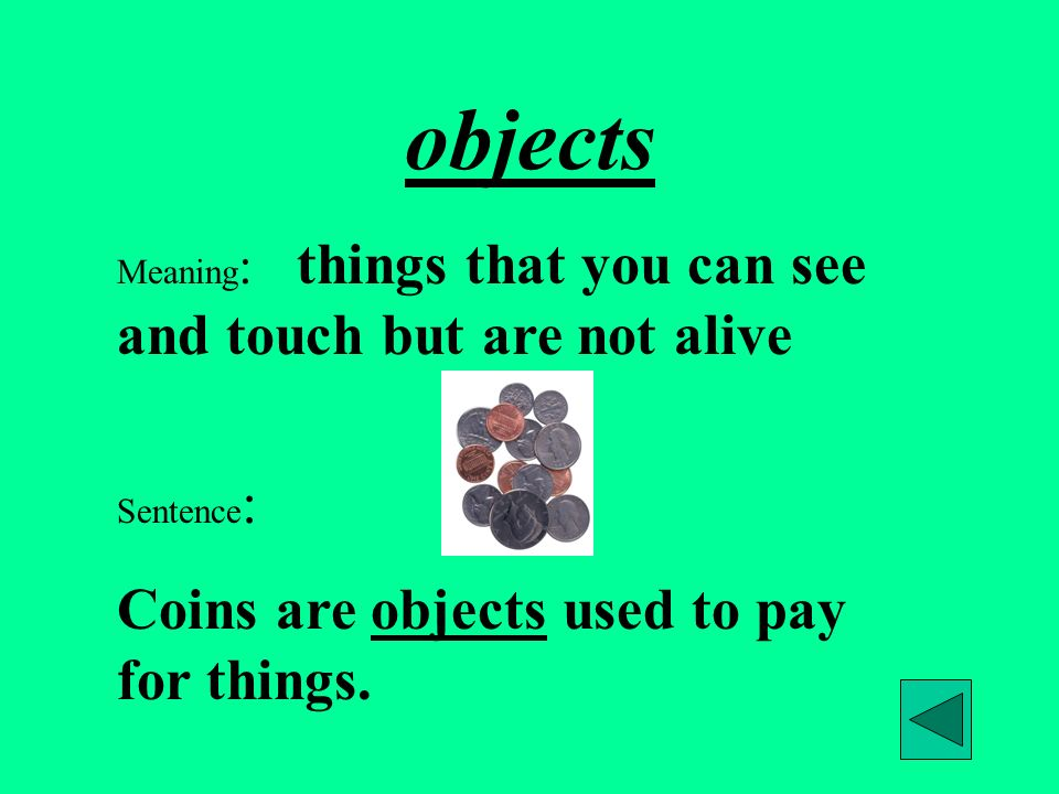 objects Meaning : things that you can see and touch but are not alive Sentence : Coins are objects used to pay for things.