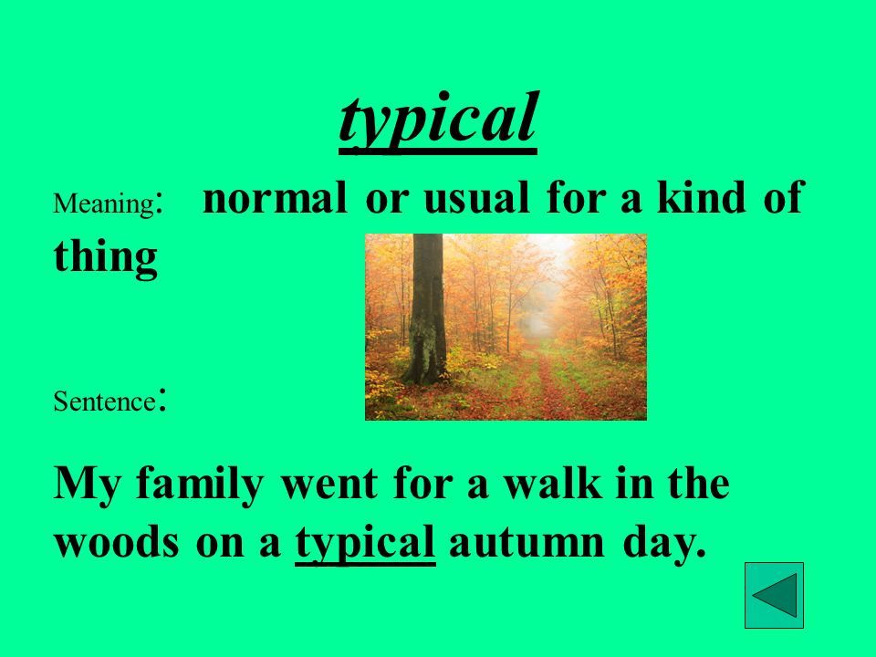 Meaning : normal or usual for a kind of thing Sentence : My family went for a walk in the woods on a typical autumn day.