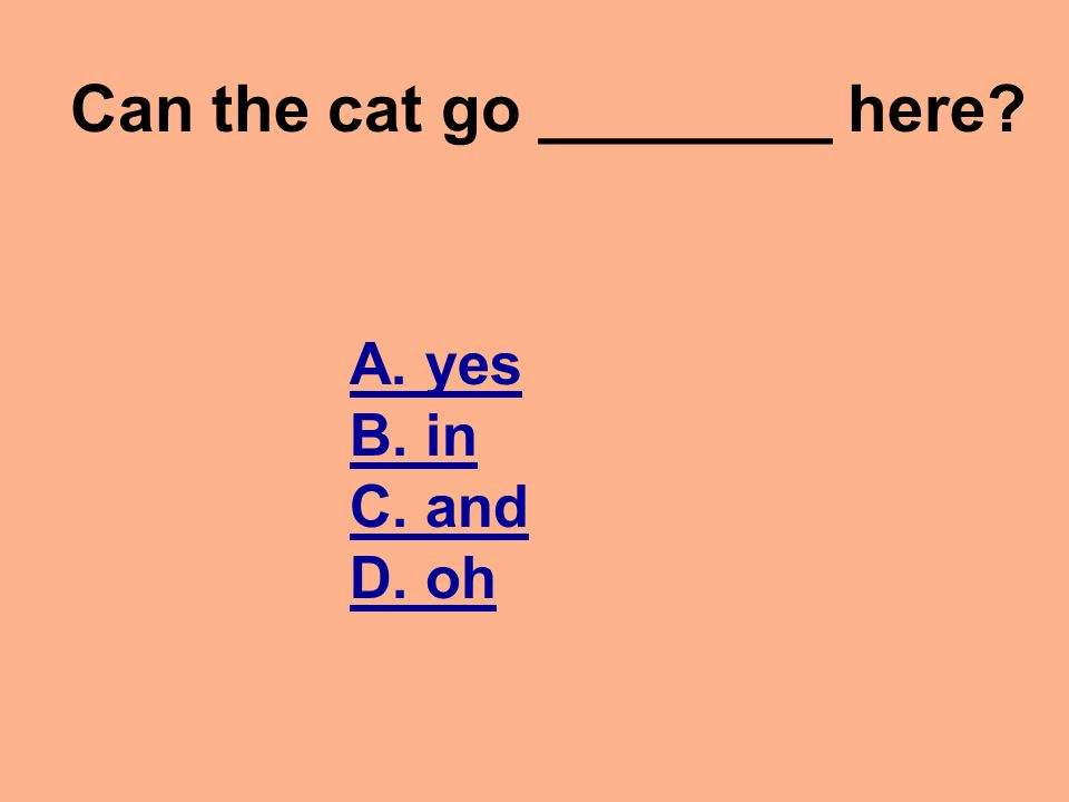 Sam and the bag Vocabulary Quiz DIRECTIONS: Read each question and click on the correct answer.