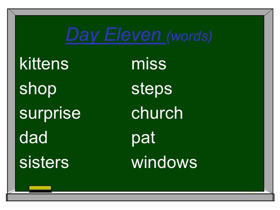 Day Eleven (words) kittensmiss shopsteps surprisechurch dadpat sisterswindows