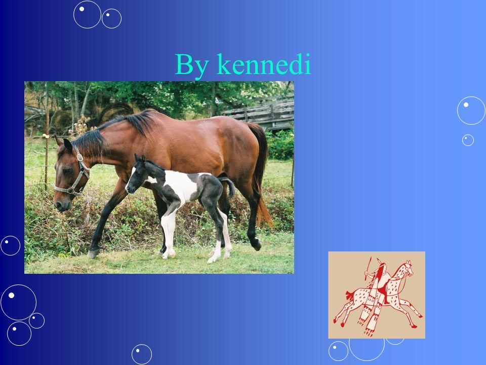 By kennedi