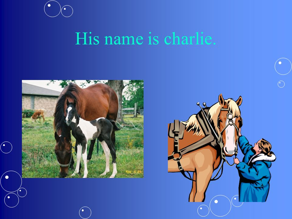 His name is charlie.