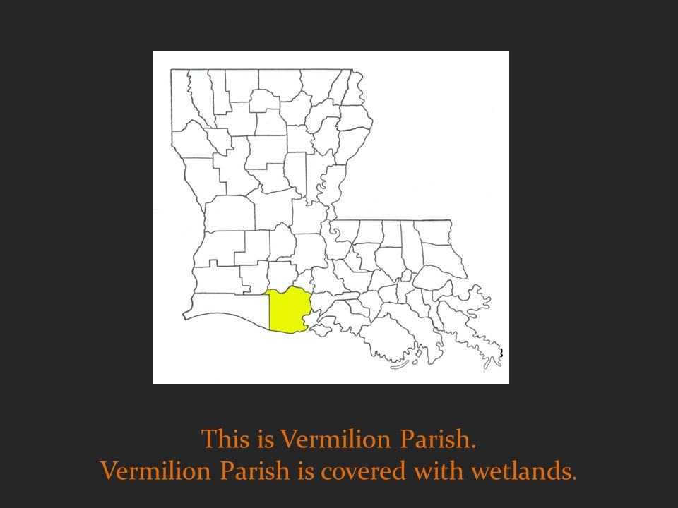 This is Vermilion Parish. Vermilion Parish is covered with wetlands.