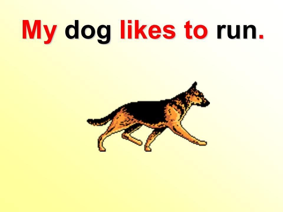 My dog likes to run.