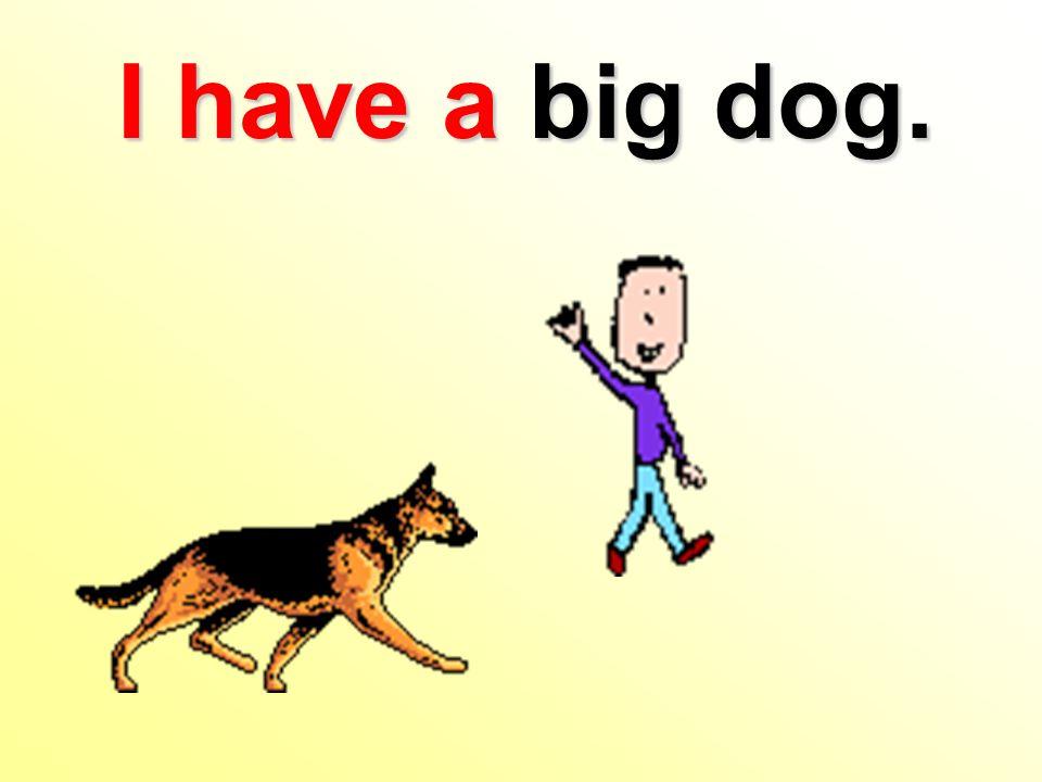 I have a big dog.