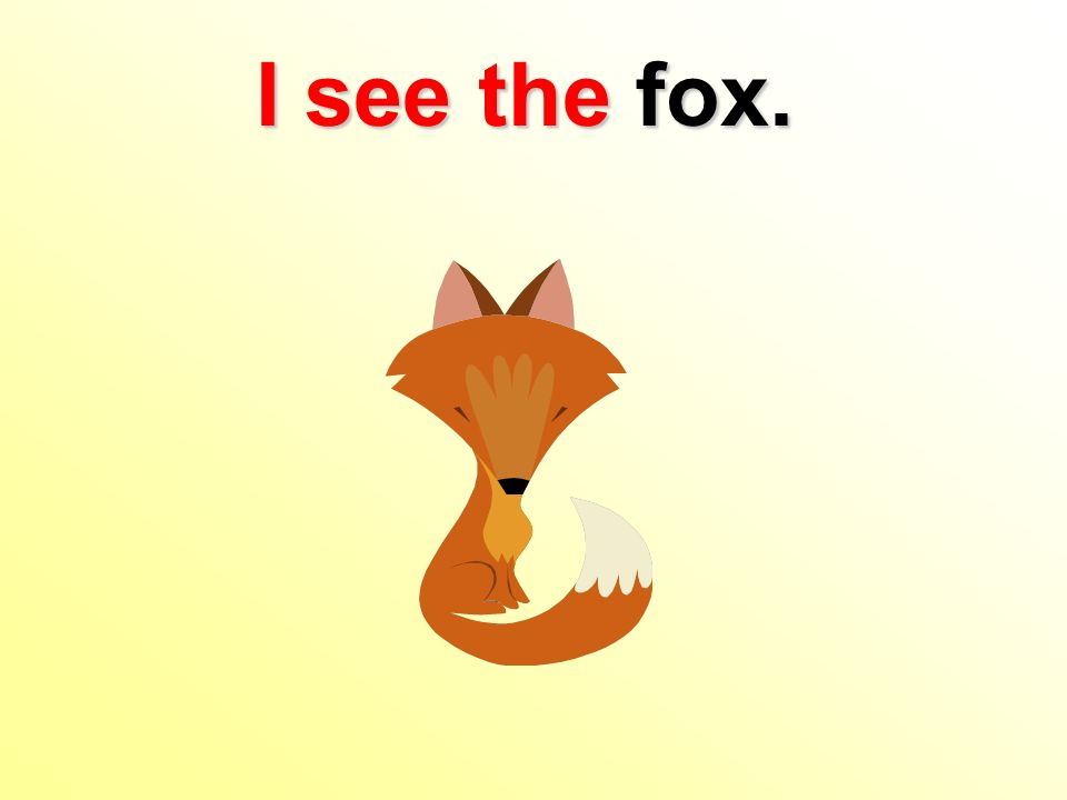 I see the fox.