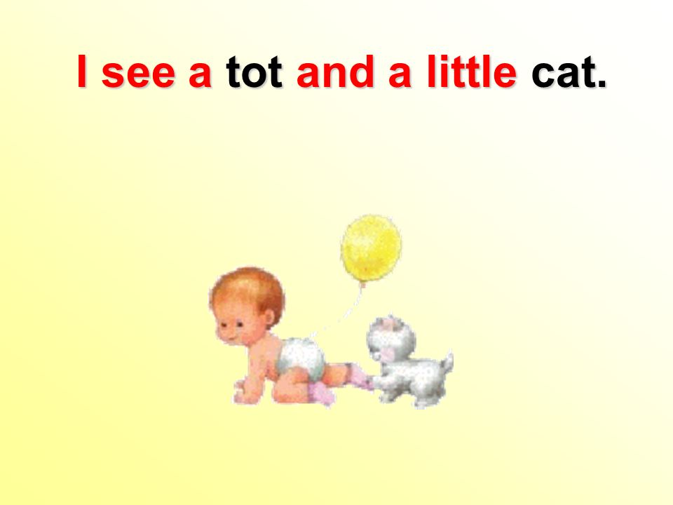 I see a tot and a little cat.